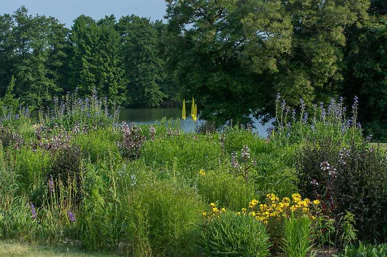 Návštěva Dendrologické zahrady