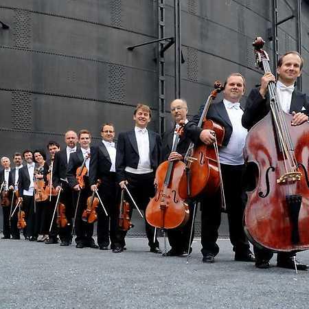 Janáčkův komorní orchestr - © Ivan Korü