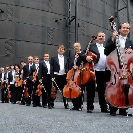 Janáček Chamber Orchestra - © Ivan Korü