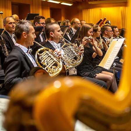 Moravian Philharmonic Orchestra  - © Šimon Kadula