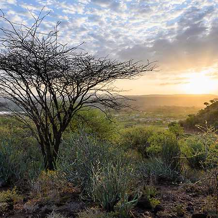 Keňa: Na motorce mezi zebrami a čajovými plantážemi