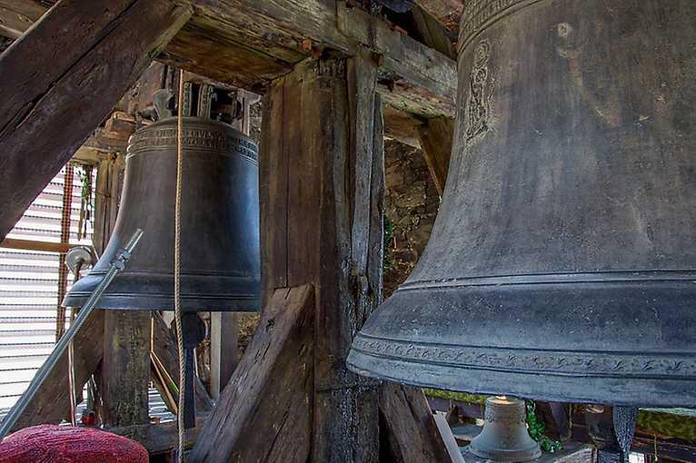 Polední zvonění naživo