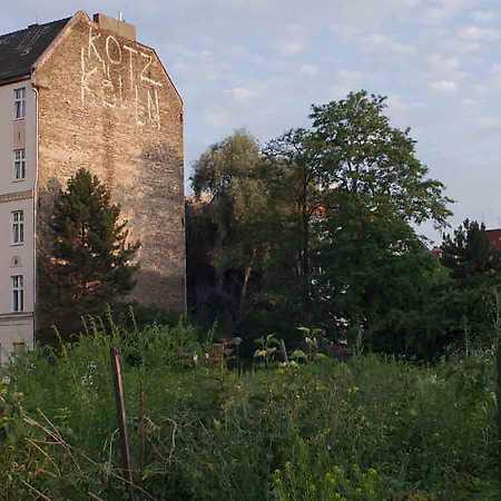Natura Urbana: The Brachen of Berlin