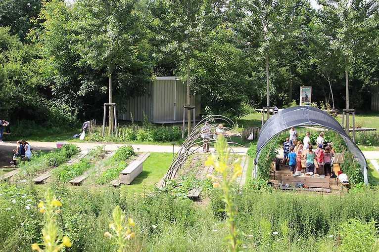 O přírodní jedlé zahradě