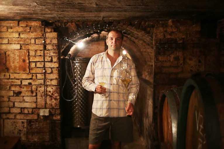 On-line degustace nových vín Vinařství Vykoukal
