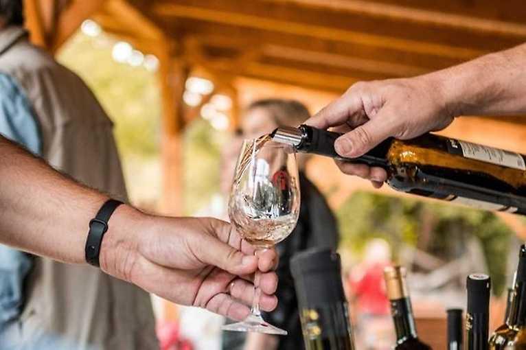 Víno zblízka: Vinaři Vrbice