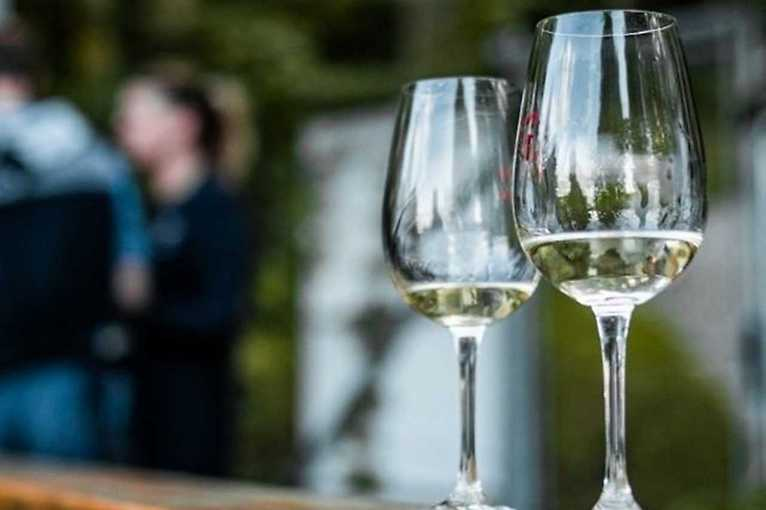 Víno zblízka: Vinaři z Mikulova