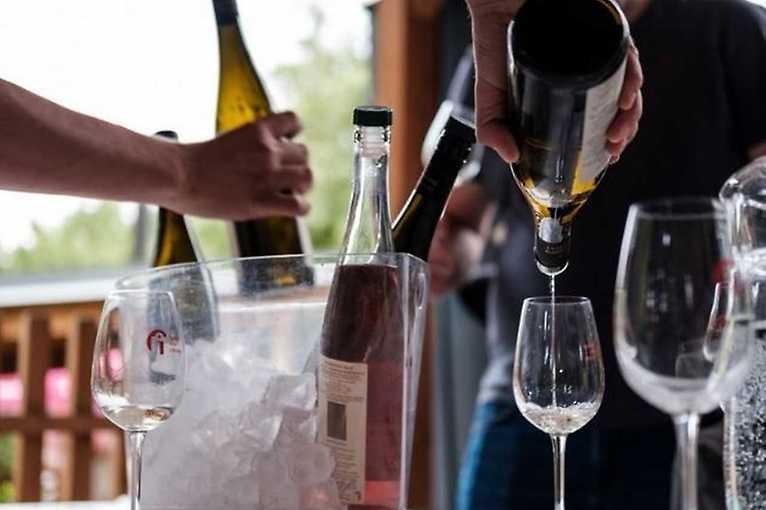 Víno zblízka: Velkobílovičtí vinaři