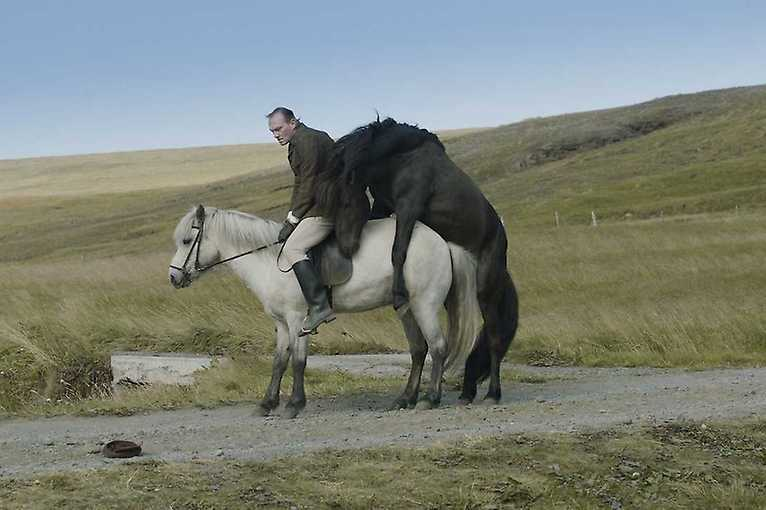 #kinaspolu: Of Horses and Men