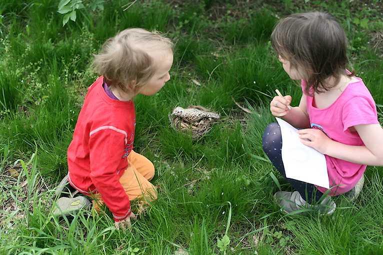 Rodinná venkovní hra – Výlet do ptačí říše s Jaruškou