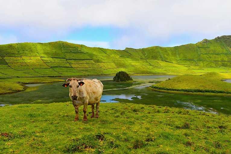 Azorské ostrovy – perly Atlantiku