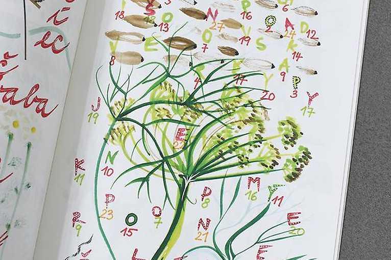 Několik postřehů k hodinám výtvarné výchovy a Rozklad rostlin